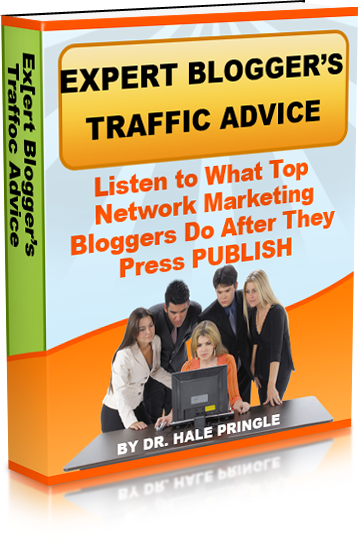Expert Bloggers Trafficecover51 copy copy