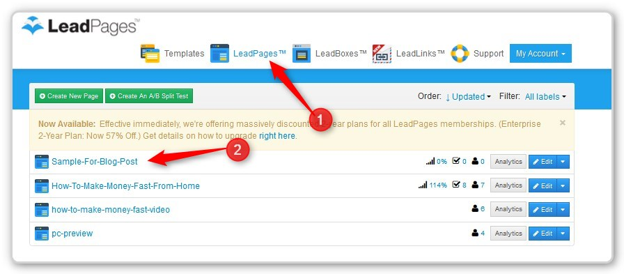 List Building With LeadPages - - List of Completed Pages